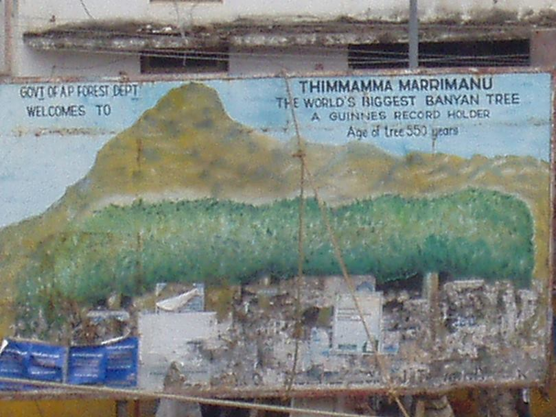 Painting of Banyan tree at Puttaparthi Bus Stand Area