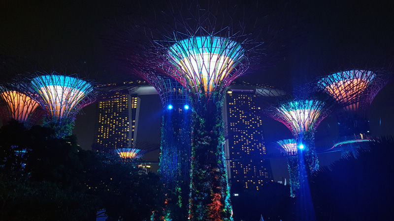 Gardens by the Bay Night Show