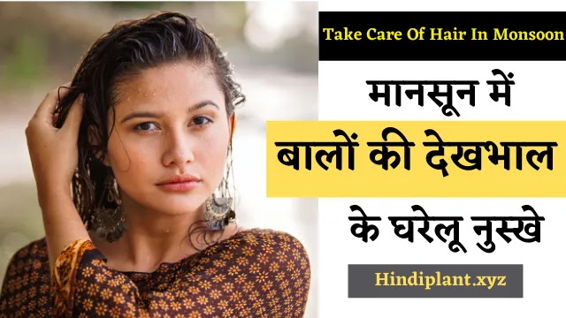 How To Take Care Of Hair In Monsoon Home Remedies In Hindi  मानसून में बालों की देखभाल के घरेलू नुस्खे