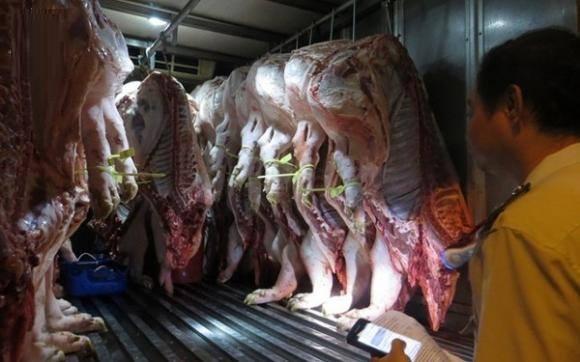 Vì sao lợn hơi tăng giá kỷ lục, đắt hơn cả thịt bò Mỹ?