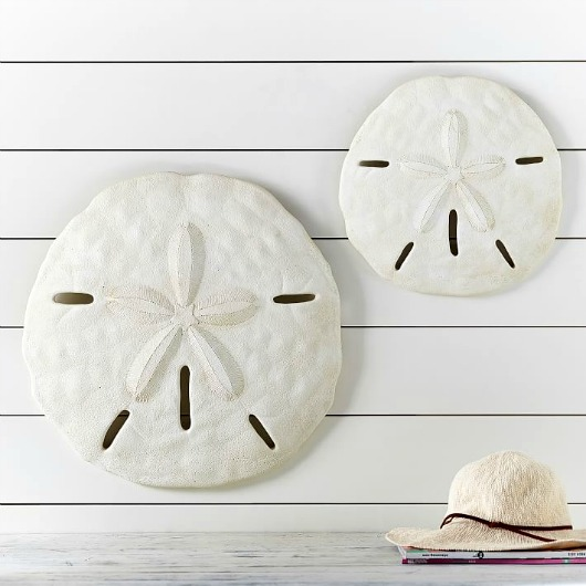 Large Starfish & Sand Dollar for Wall Decor - Coastal ...