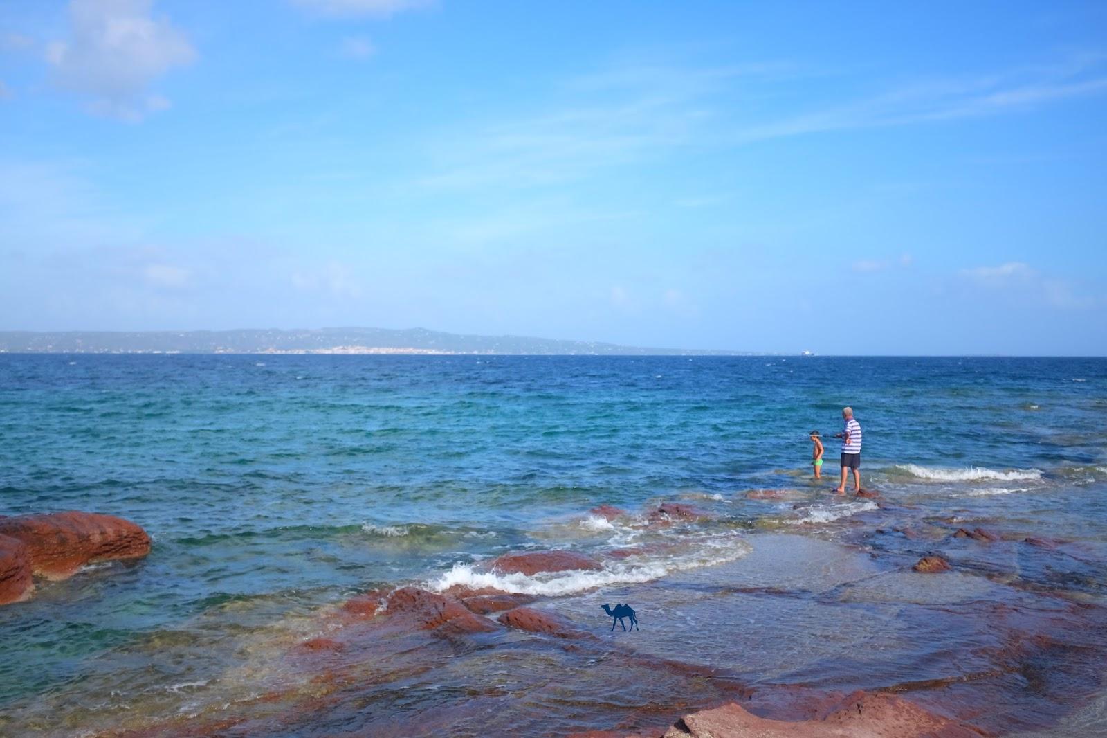 Le Chameau Bleu - Peche sur la plage  de Casaletta
