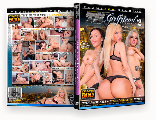 DVD – TS Girlfriend Experience 2 XXX 2018 – ISO