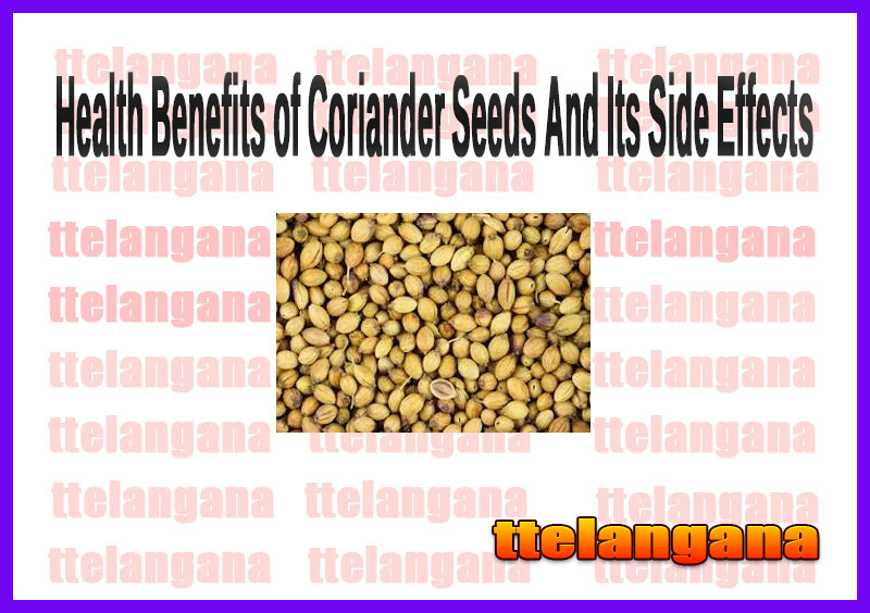 Health Benefits of Coriander Seeds And Its Side Effects