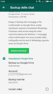 Salva Chat WhatsApp