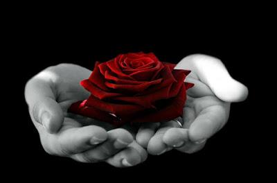 Mawar Merah memiliki khasiat menangkap energi negatif