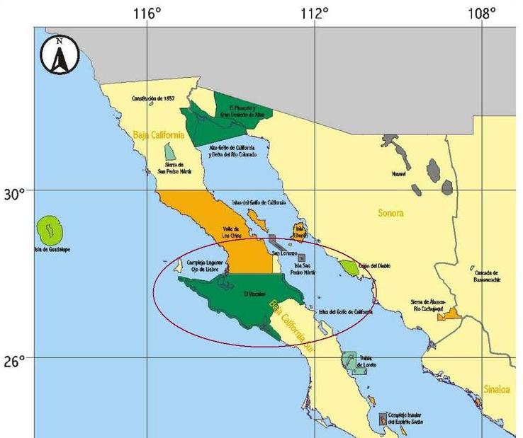 Baja Racing News LIVE!: Expanded environmental protection ...