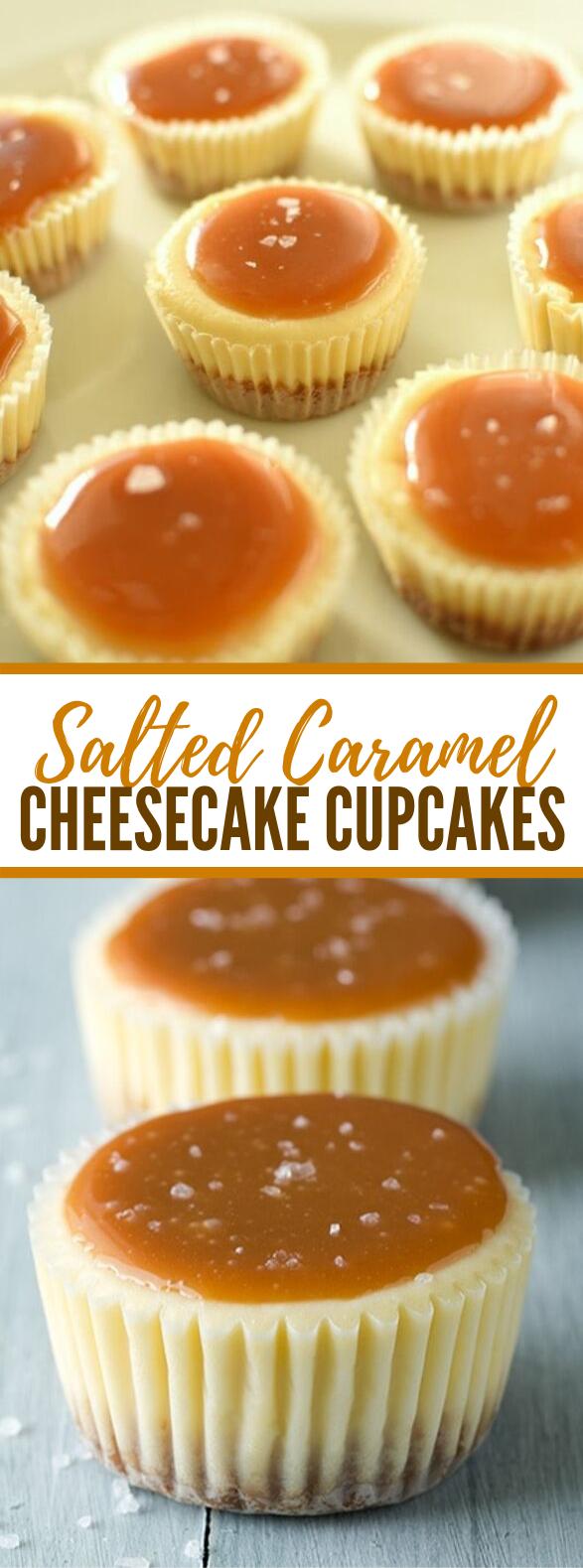 Salted Caramel Cheesecake Cupcakes #desserts #minicheesecake