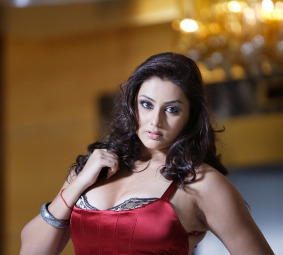 South Indian Actress Namita Hot Wallpapers  Prom Hairstyles-4693