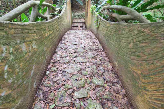 Hollowed-out tree, bridge, stone, path, stream