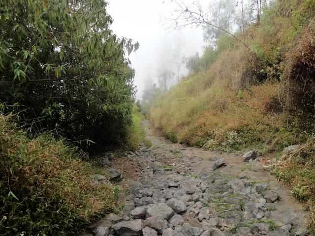 jalur pendakian gunung welirang via tretes