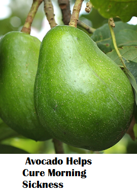 Amazing health benefits of Avocado Butter Fruit Makhanphal - Avocado Helps Cure Morning Sickness
