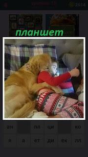 девочка на диване с собакой смотрит в планшет