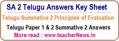 SA 3 Telugu Answers
