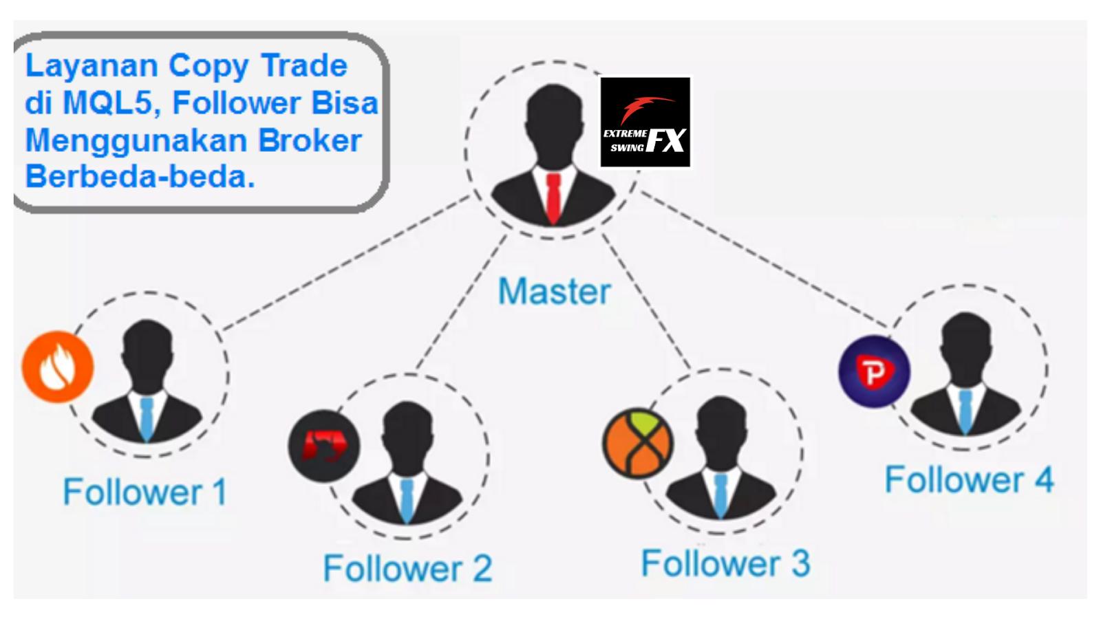Begini Lho Sistem Forex Copy Trade Di Mql5 Bekerja Bisnis For Living