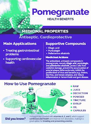 Medicinal benefits of pomegranate tree