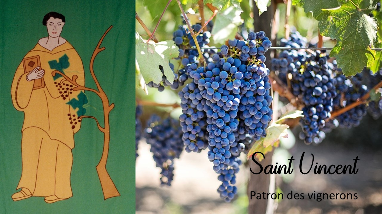 saint vincent patron des vignerons