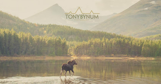 Fall in Glacier National Park, Big Sky Journal Interviews Tony Bynum