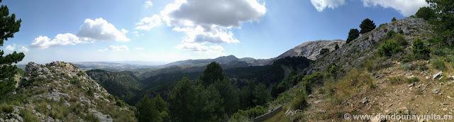 Vistas del pinar, subida a La Maroma