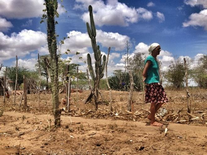 Municípios de América Dourada e Bonito tem situação de emergência reconhecida por seca