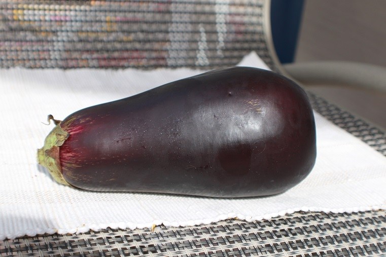 This is a fresh full size eggplant on a table with a wicker chair in the background