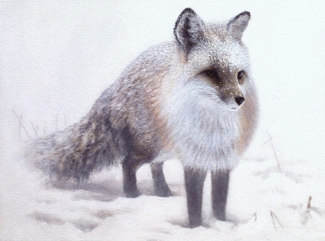 08-Fox-Nick-Sider-Realistic-Animal-Paintings-more-than-a-Photo-Image-www-designstack-co