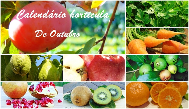 Calendário  horticula de Outubro, sementeiras e plantações
