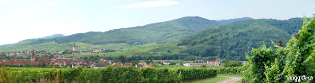 Uno dei panorami della Route des Vins d'Alsace