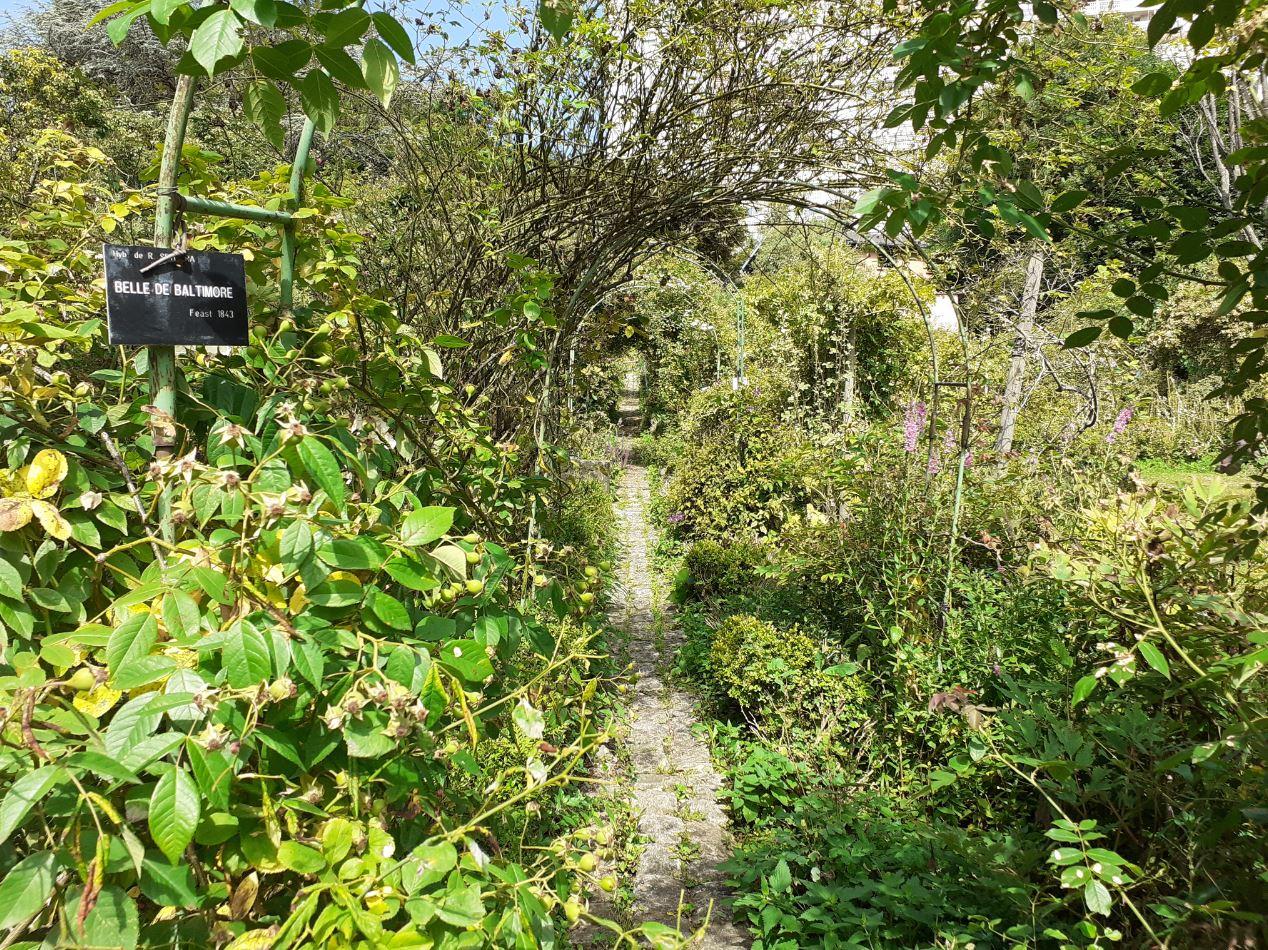 jardin remarquable lyon
