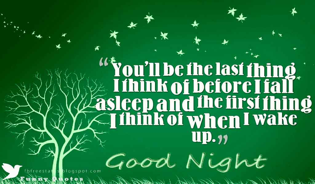 Good Night Quotes, You'll be the last thing I think of before I fall asleep and the first thing I think of when I wake up. Good Night