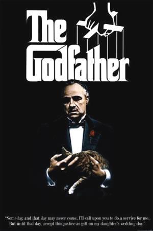 Godfather 1 mkv