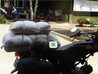 Pembeli benih MANFAAT TANI Subang, Jabar.