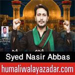 https://aliwalayazadar.blogspot.com/2020/08/syed-nasir-abbas-nohay-2021.html