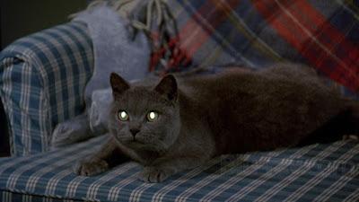 Dunia Sinema Review Pet Sematary