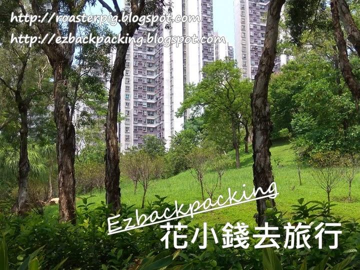 青衣公園桃花園
