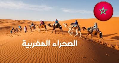 """جنوب إفريقيا تهاجم المغرب في الأمم المتحدة و الإمارات العربية المتحدة تجدد """"دعمها الكامل"""" لسيادة المغرب على صحرائه"""