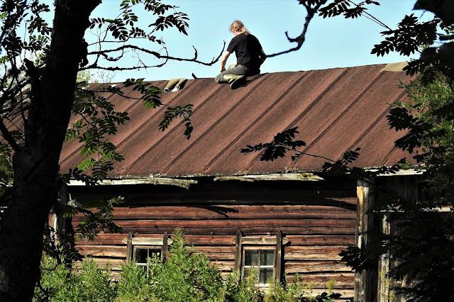 katolla, hirsinavetta, katonpaikkaus, Ari