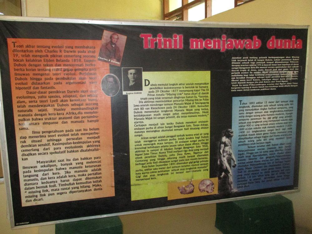 Sejarah Museum Trinil