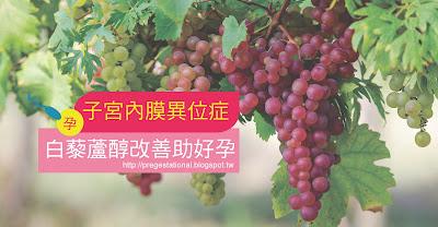 子宮內膜異位症救星 白藜蘆醇助孕 白藜葡萄