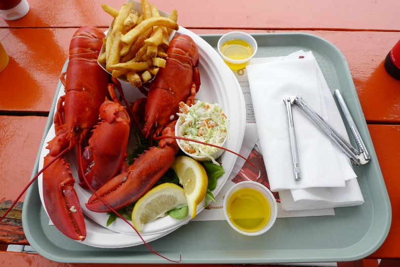 coastal plated lobster