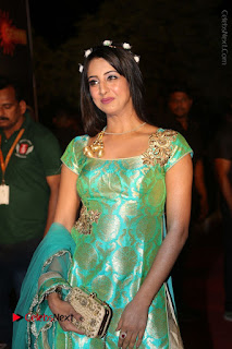 Actress Sanjjanaa Stills in Green Long Dress at Gemini TV Puraskaralu 2016 Event  0023.JPG