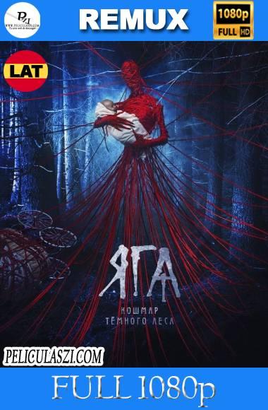 Baba Yaga: El terror del Bosque Oscuro (2020) Full HD REMUX & BRRip 1080p Dual-Latino