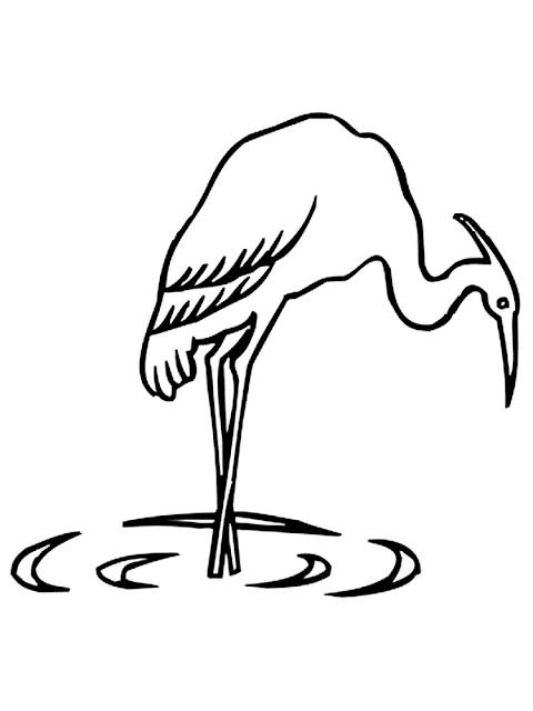 Mewarnai Gambar Burung Bangau - 10