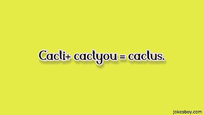 best cactus puns