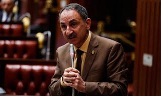 النائب مجدي ملك: منظومة الدعم لاتحقق أهدافها والدعم لا يصل إلى مستحقيه