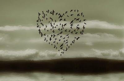 aşk, kalp, kuşlar, kırlangıç, gökyüzü
