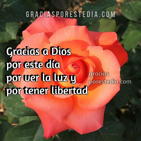 Bonitas frases de gracias a Dios por este día, bendiciones, imágenes con mensajes cristianos por Mery Bracho.