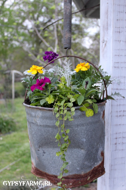 galvanized bucket upcycled into hanging flower basket