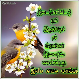 Good morning wishes tamil