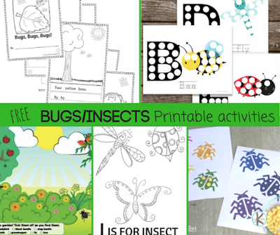 insect-educational-worksheets-bug-learning-activities